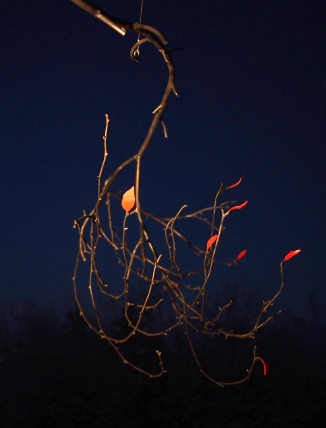 Steel Birch Branch with Red  Leaves